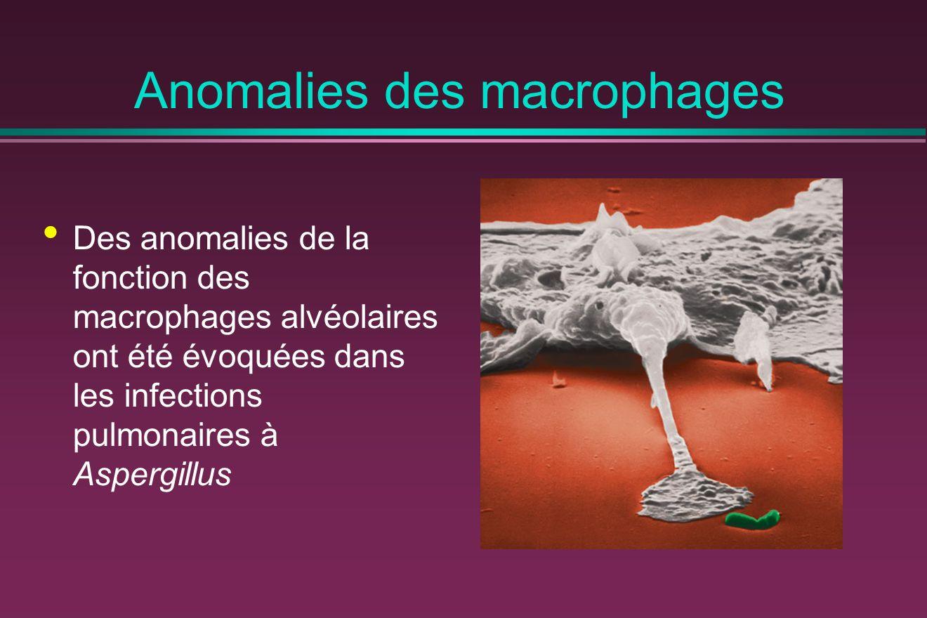 Anomalies des macrophages