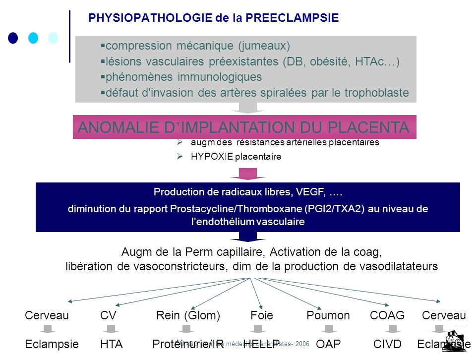 PHYSIOPATHOLOGIE de la PREECLAMPSIE
