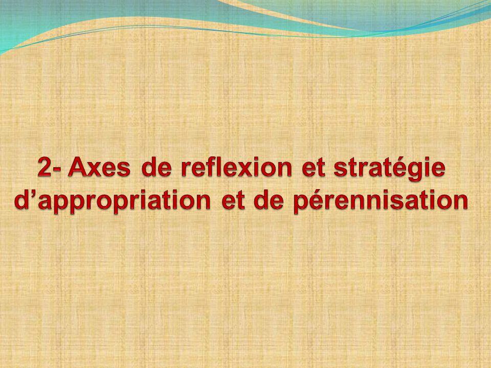 2- Axes de reflexion et stratégie d'appropriation et de pérennisation