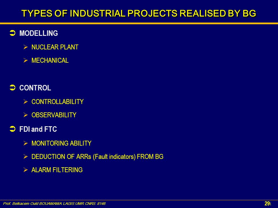 TYPES OF INDUSTRIAL PROJECTS REALISED BY BG