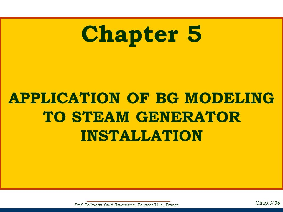 APPLICATION OF BG MODELING TO STEAM GENERATOR INSTALLATION