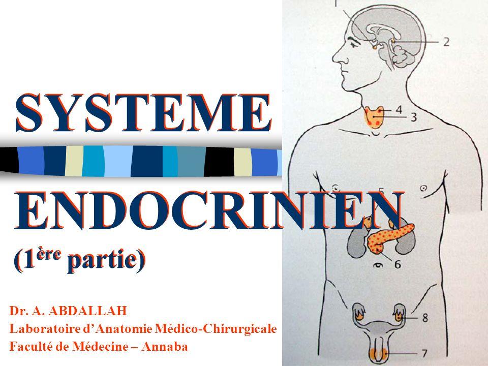SYSTEME ENDOCRINIEN (1ère partie)