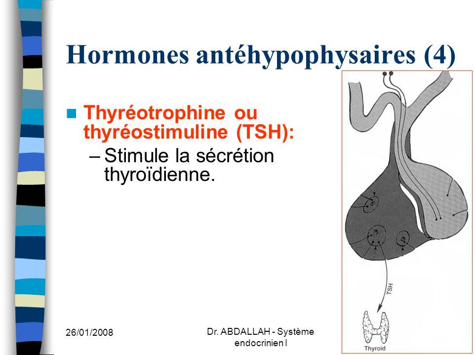 Hormones antéhypophysaires (4)