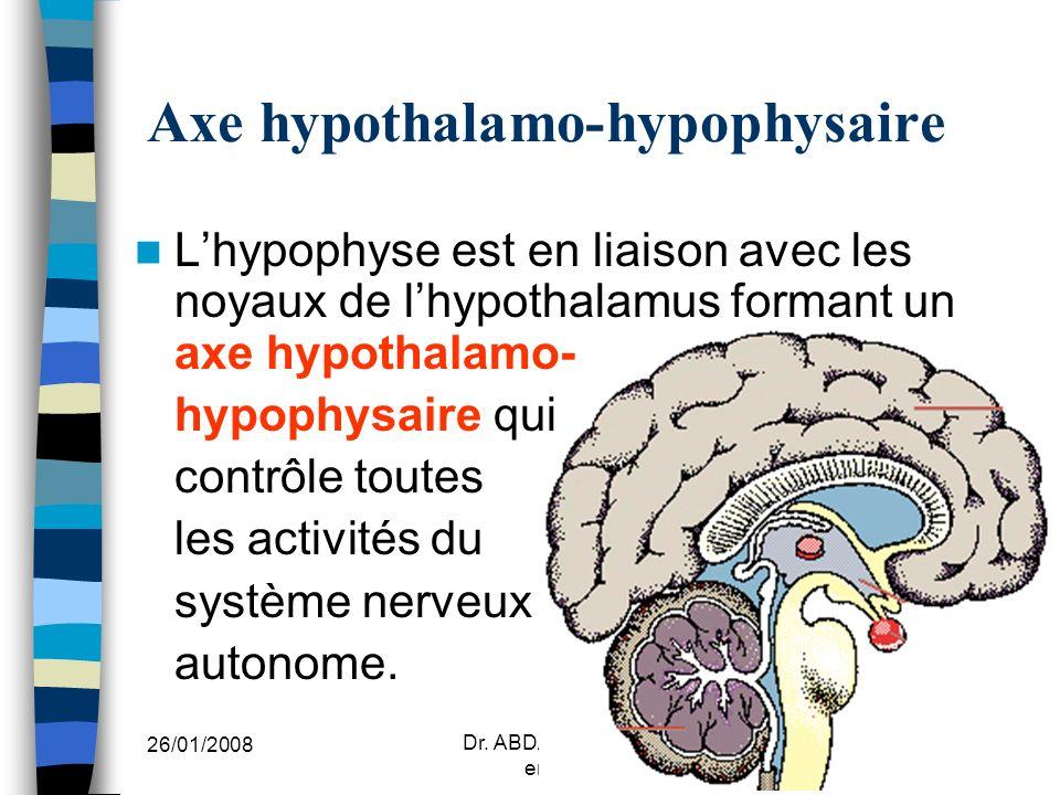 Axe hypothalamo-hypophysaire