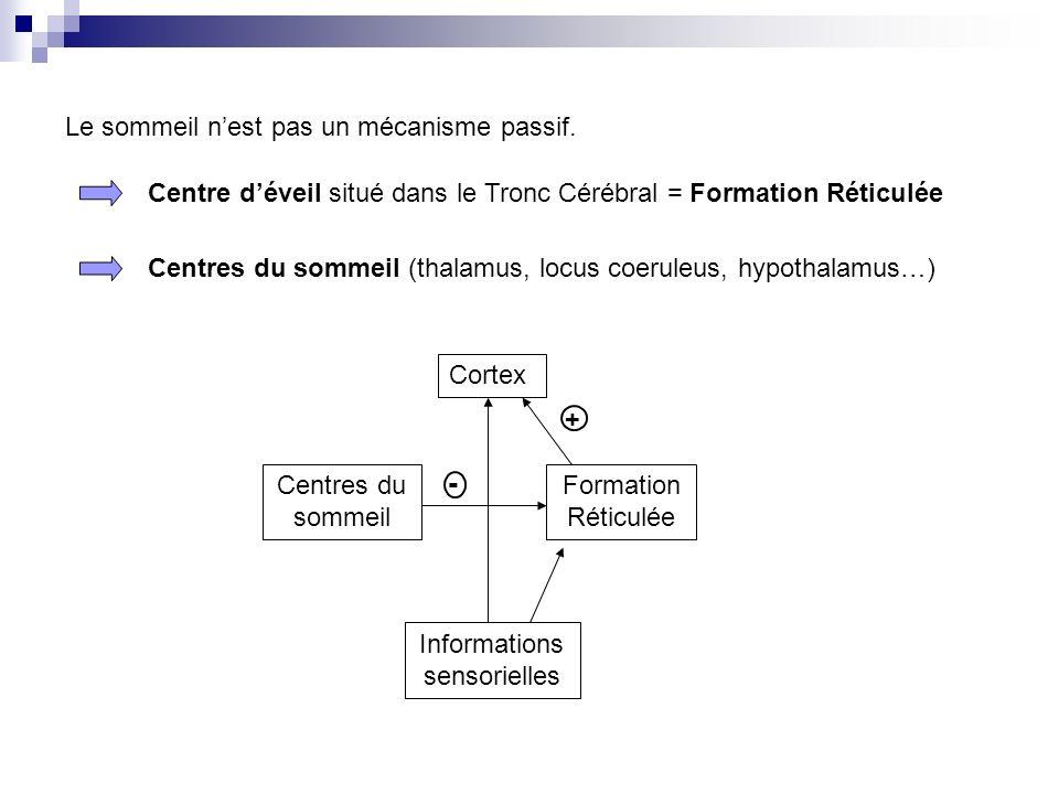 Informations sensorielles