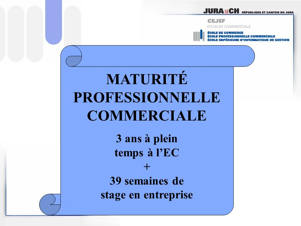 MATURITÉ PROFESSIONNELLE COMMERCIALE