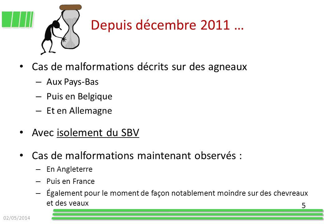 Depuis décembre 2011 … Cas de malformations décrits sur des agneaux