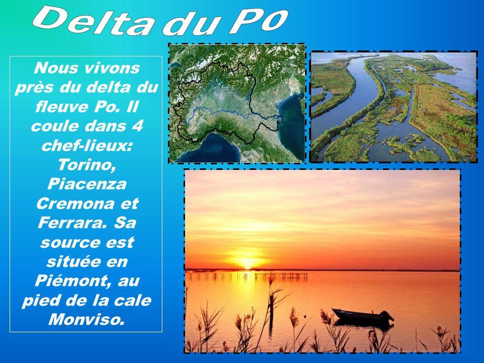 Delta du Po