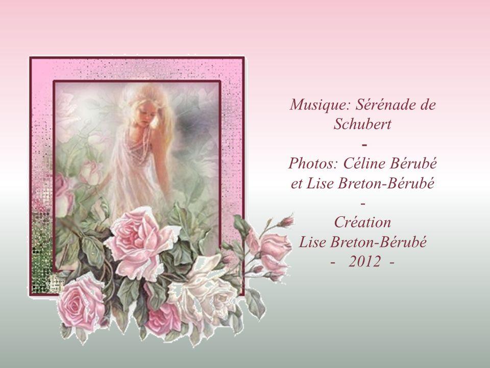 Musique: Sérénade de Schubert -