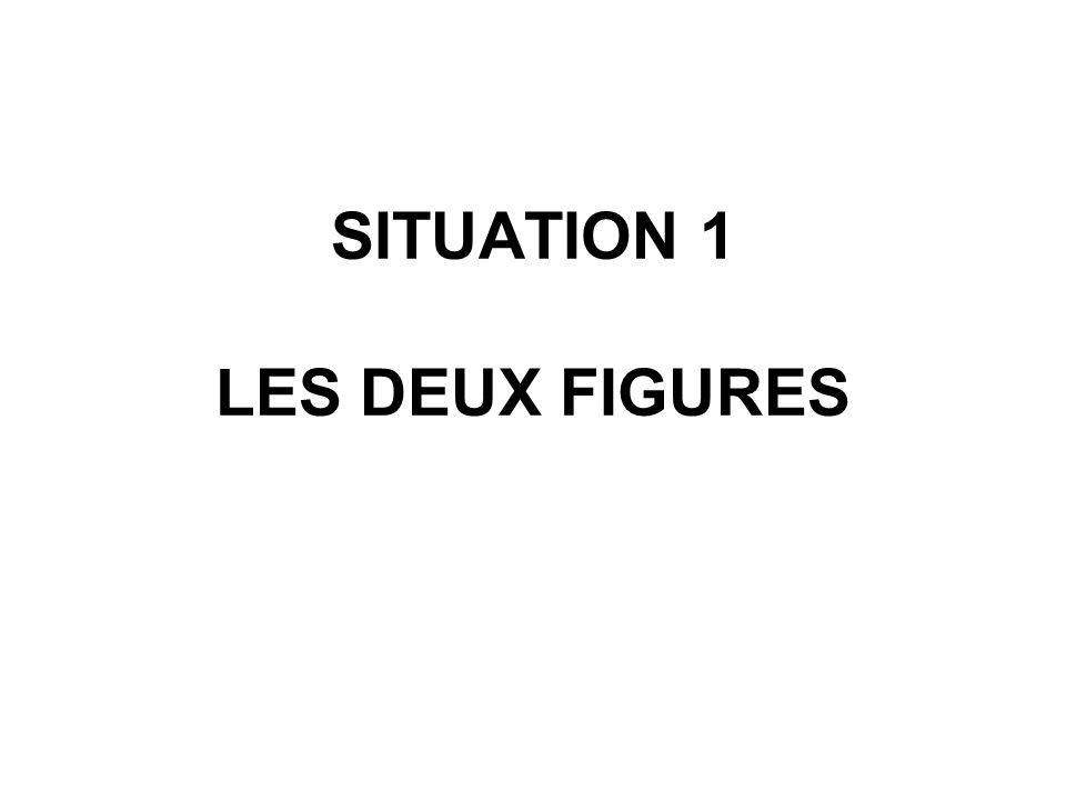 SITUATION 1 LES DEUX FIGURES