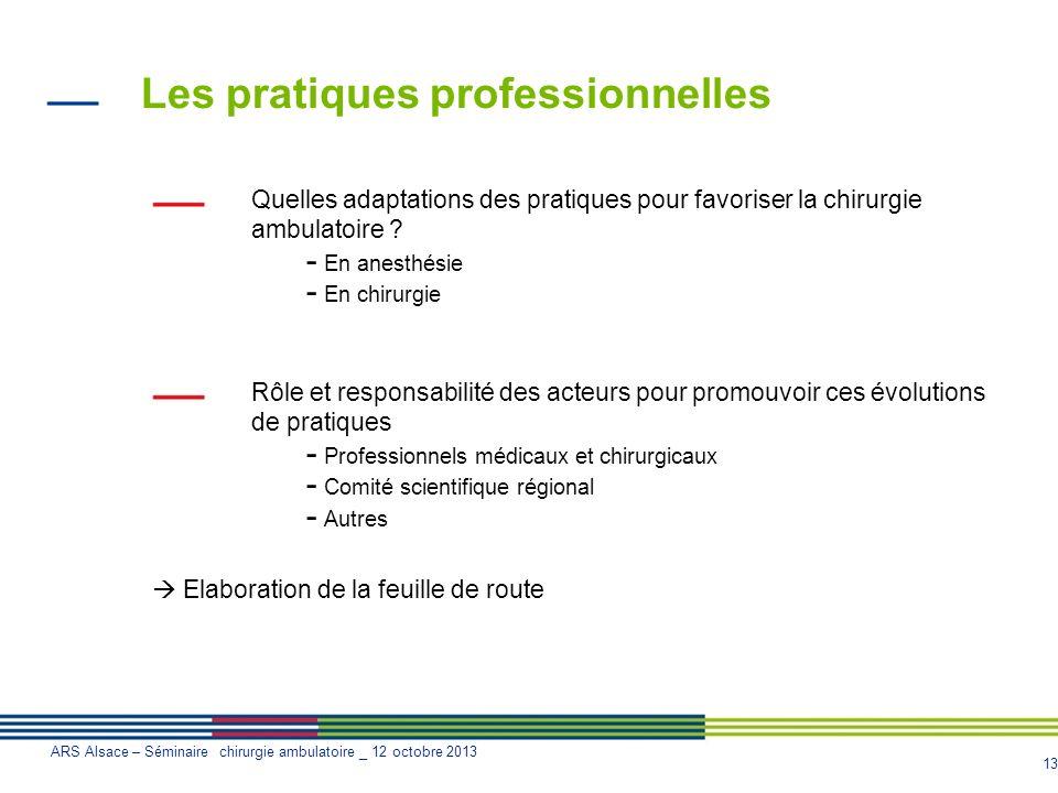 Les pratiques professionnelles