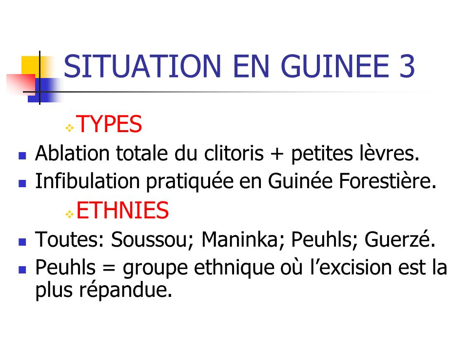 SITUATION EN GUINEE 3 TYPES ETHNIES