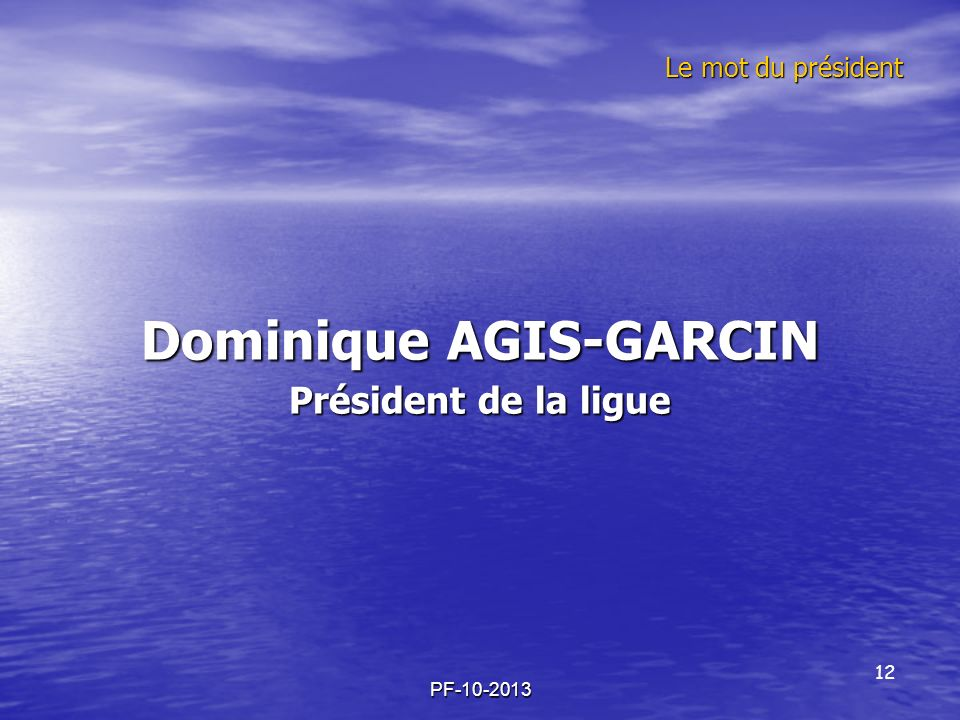 Dominique AGIS-GARCIN