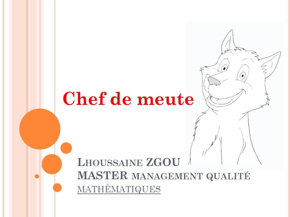 Lhoussaine ZGOU MASTER management qualité mathématiques