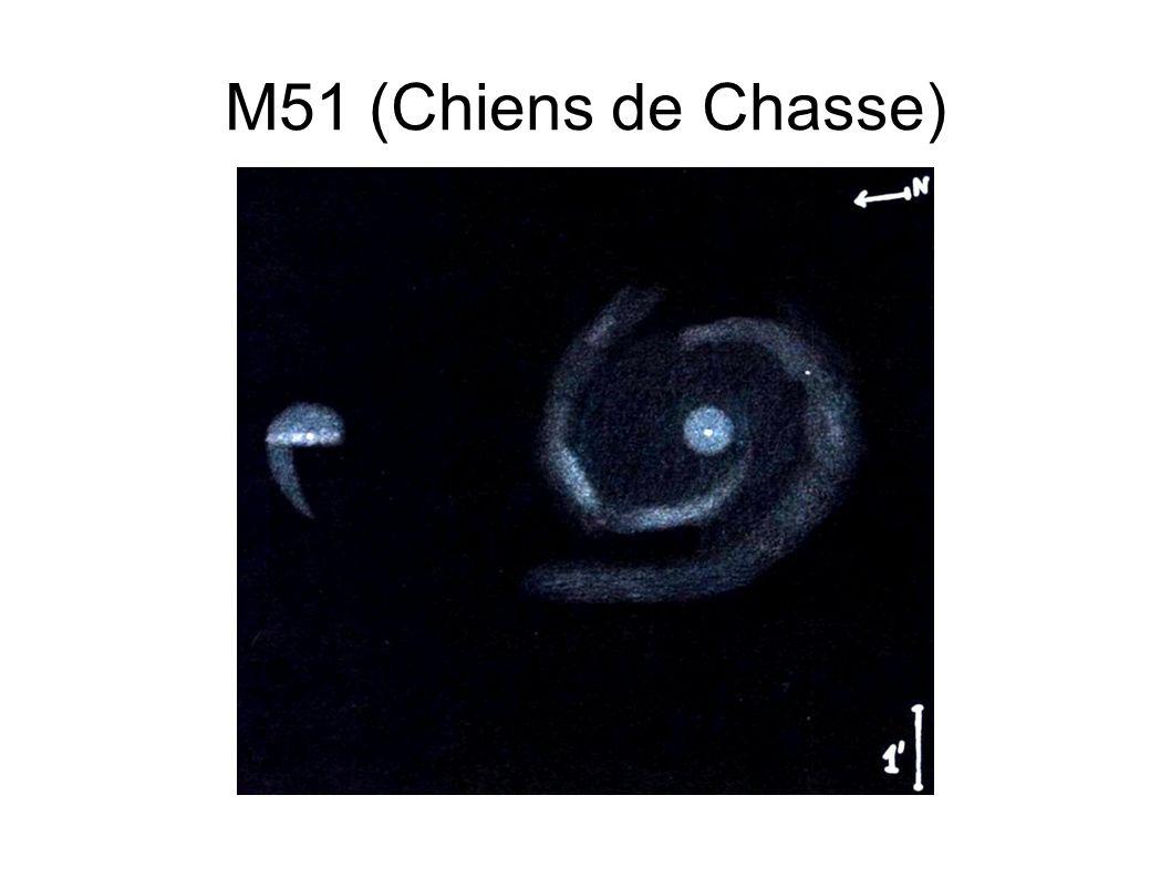 M51 (Chiens de Chasse)