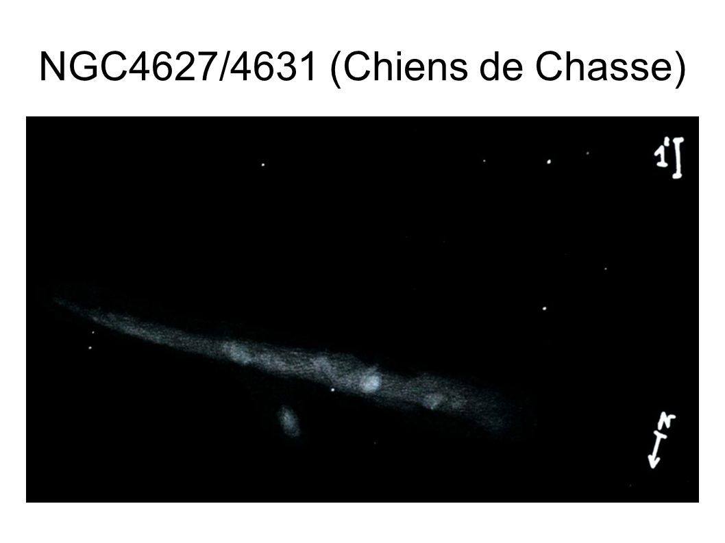 NGC4627/4631 (Chiens de Chasse)
