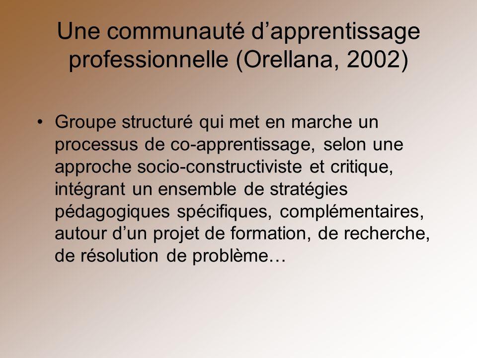 Une communauté d'apprentissage professionnelle (Orellana, 2002)