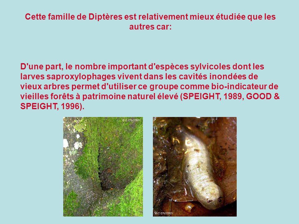 Cette famille de Diptères est relativement mieux étudiée que les autres car: