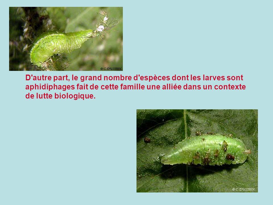 D autre part, le grand nombre d espèces dont les larves sont aphidiphages fait de cette famille une alliée dans un contexte de lutte biologique.