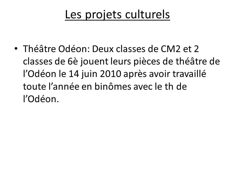 Les projets culturels