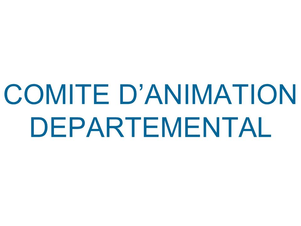 COMITE D'ANIMATION DEPARTEMENTAL