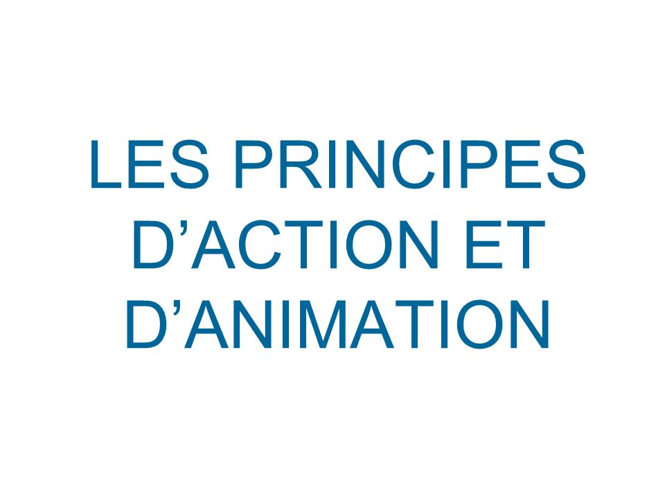 LES PRINCIPES D'ACTION ET D'ANIMATION