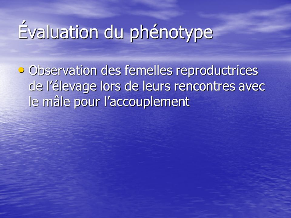 Évaluation du phénotype