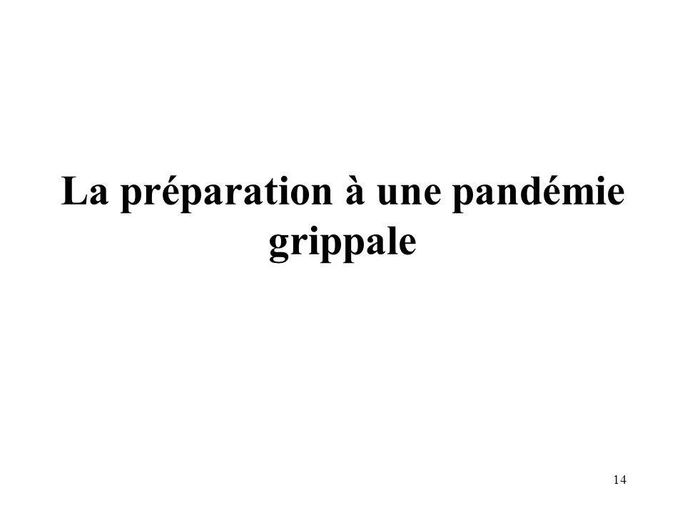 La préparation à une pandémie grippale