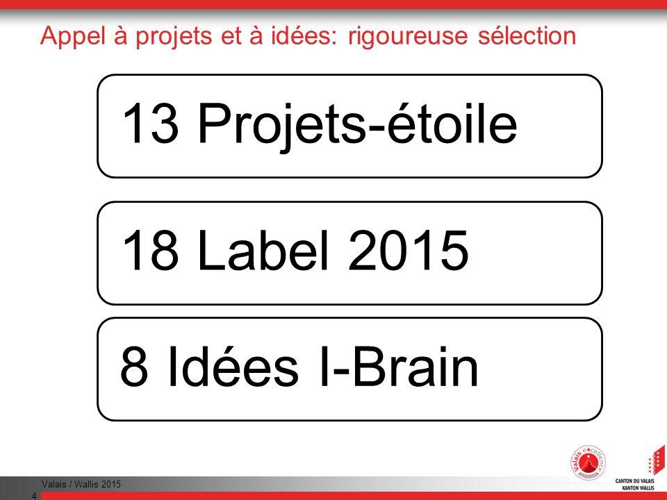 Appel à projets et à idées: rigoureuse sélection