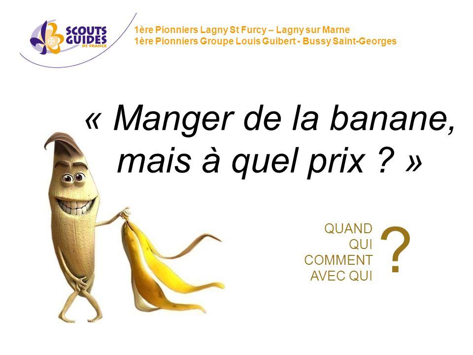 « Manger de la banane, mais à quel prix »