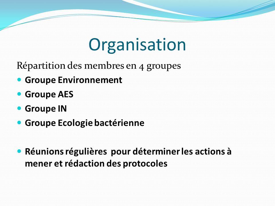 Organisation Répartition des membres en 4 groupes Groupe Environnement