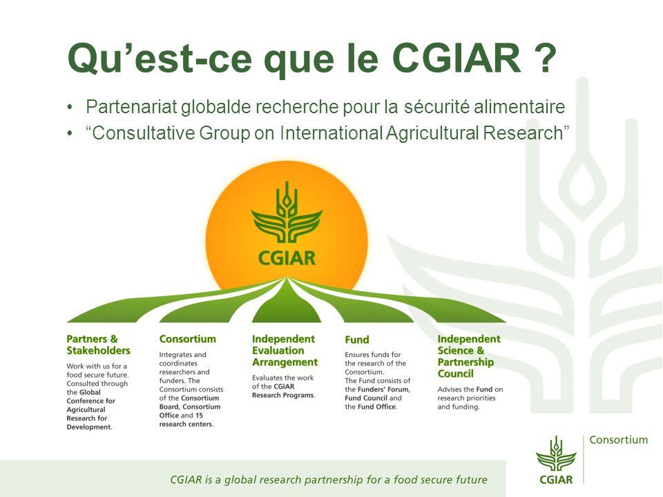 Qu'est-ce que le CGIAR . Partenariat globalde recherche pour la sécurité alimentaire.