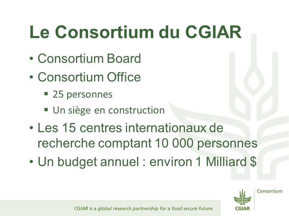 Le Consortium du CGIAR Consortium Board Consortium Office