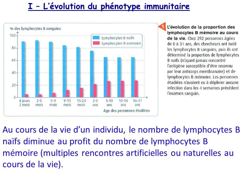 I – L'évolution du phénotype immunitaire