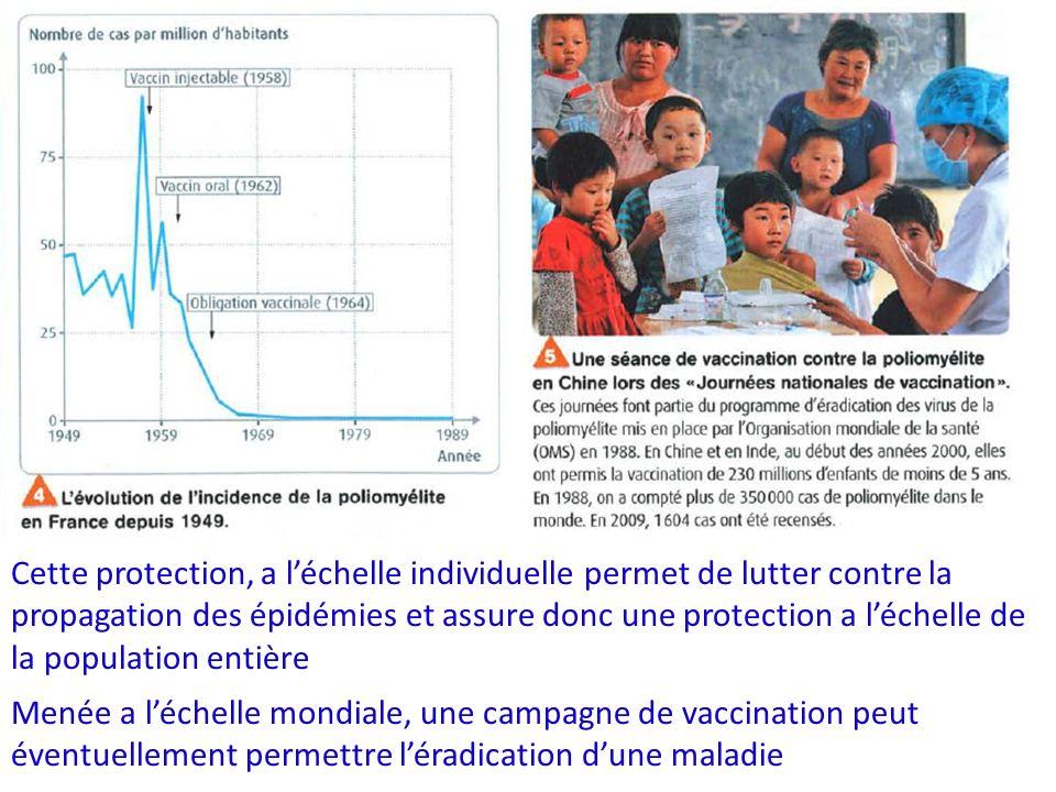 Cette protection, a l'échelle individuelle permet de lutter contre la propagation des épidémies et assure donc une protection a l'échelle de la population entière