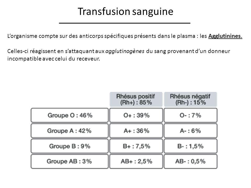 Transfusion sanguine L'organisme compte sur des anticorps spécifiques présents dans le plasma : les Agglutinines.