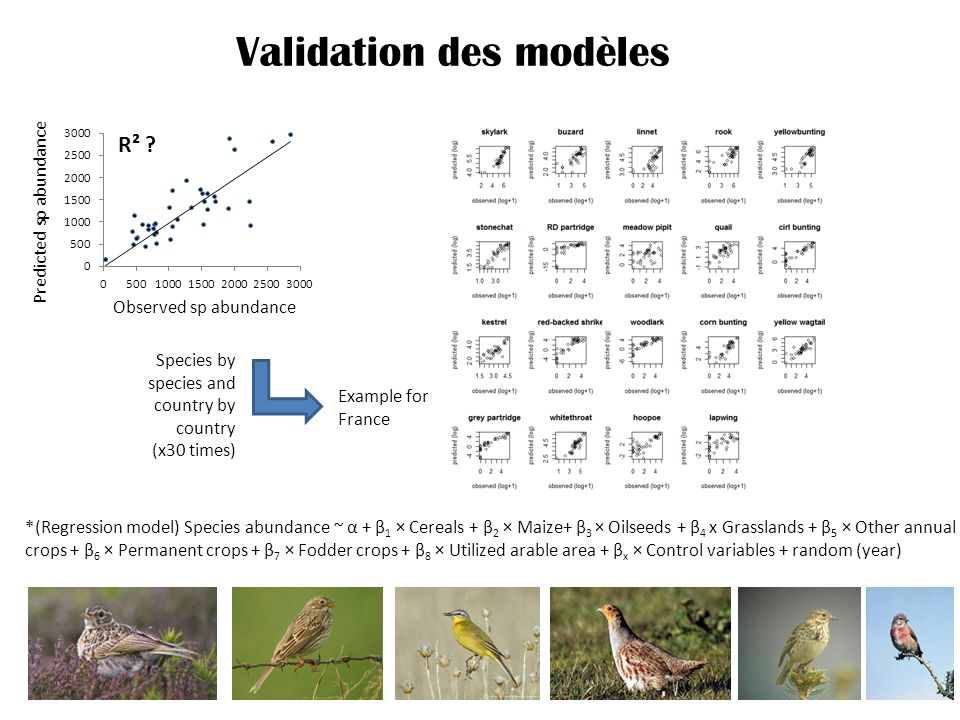 Validation des modèles