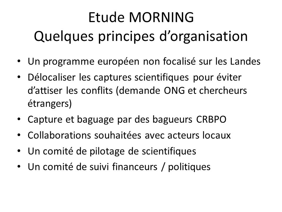 Etude MORNING Quelques principes d'organisation