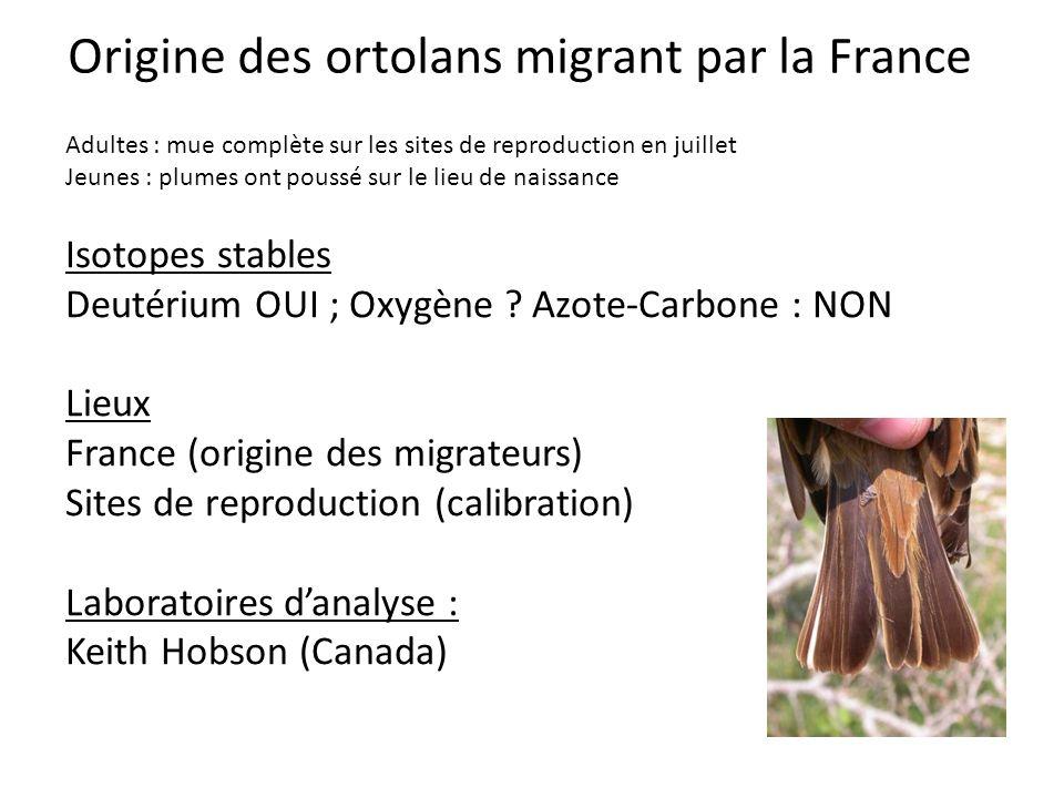 Origine des ortolans migrant par la France