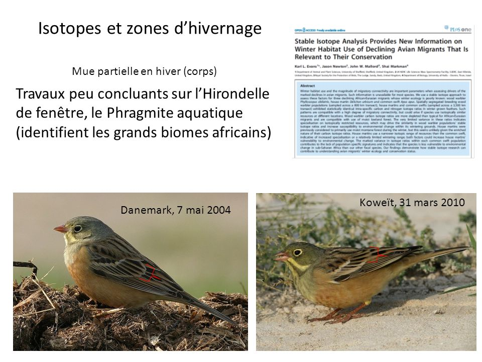 Isotopes et zones d'hivernage
