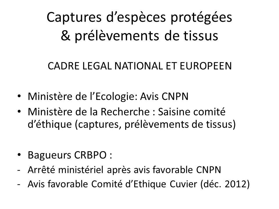 Captures d'espèces protégées & prélèvements de tissus