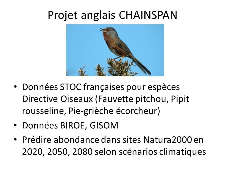 Projet anglais CHAINSPAN