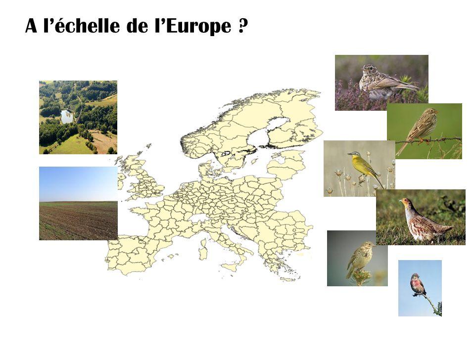 A l'échelle de l'Europe