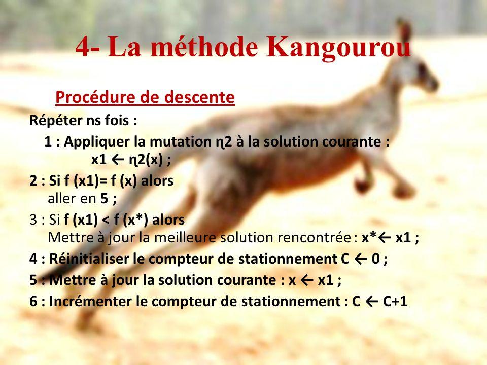 4- La méthode Kangourou Procédure de descente Répéter ns fois :