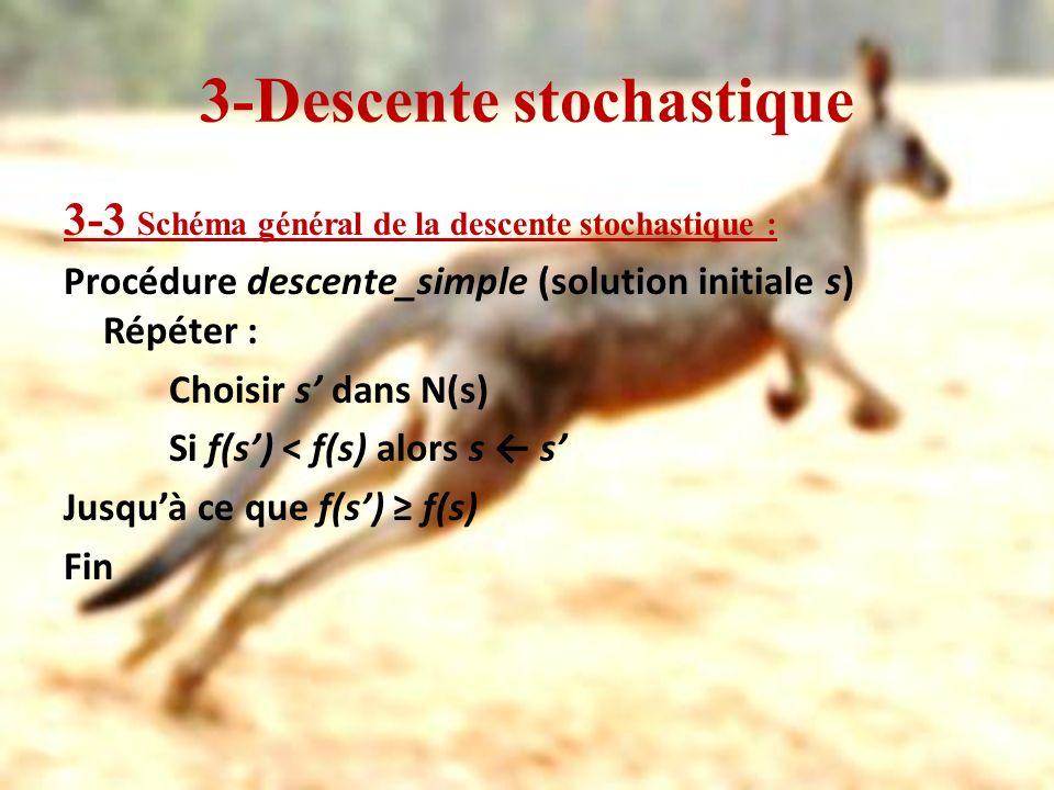 3-Descente stochastique