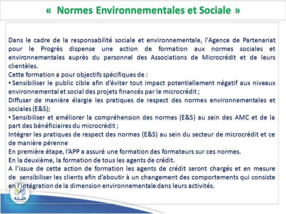 « Normes Environnementales et Sociale »