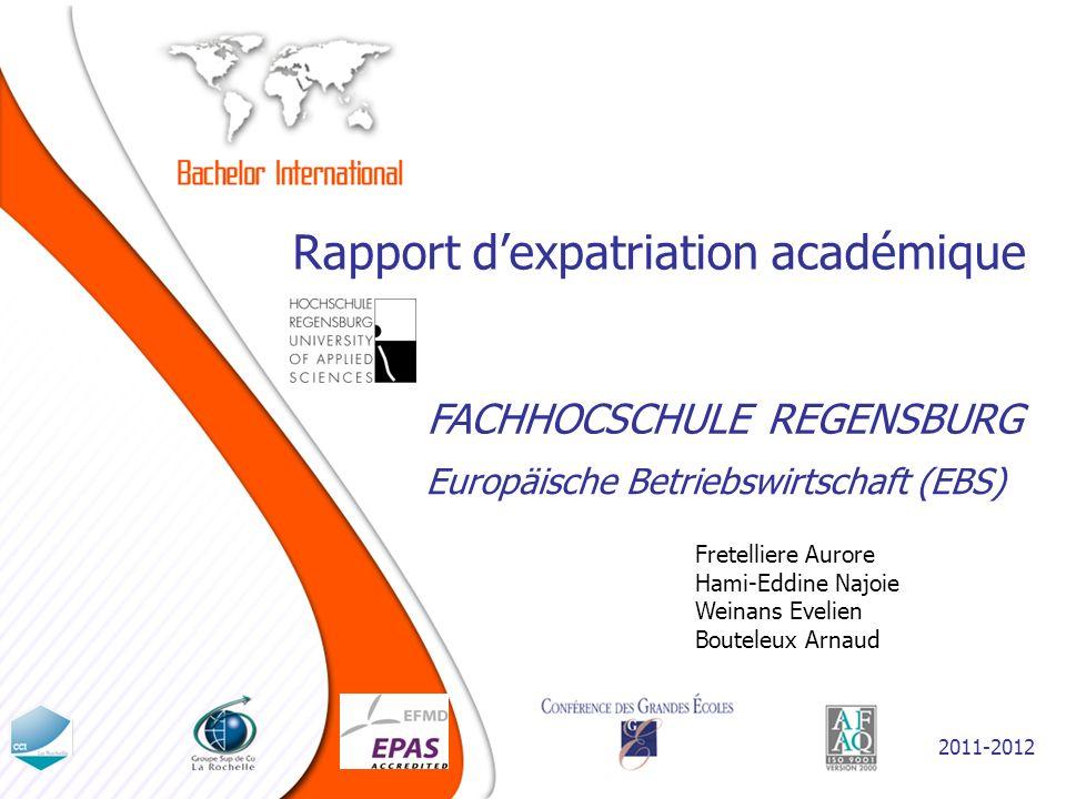 Rapport d'expatriation académique