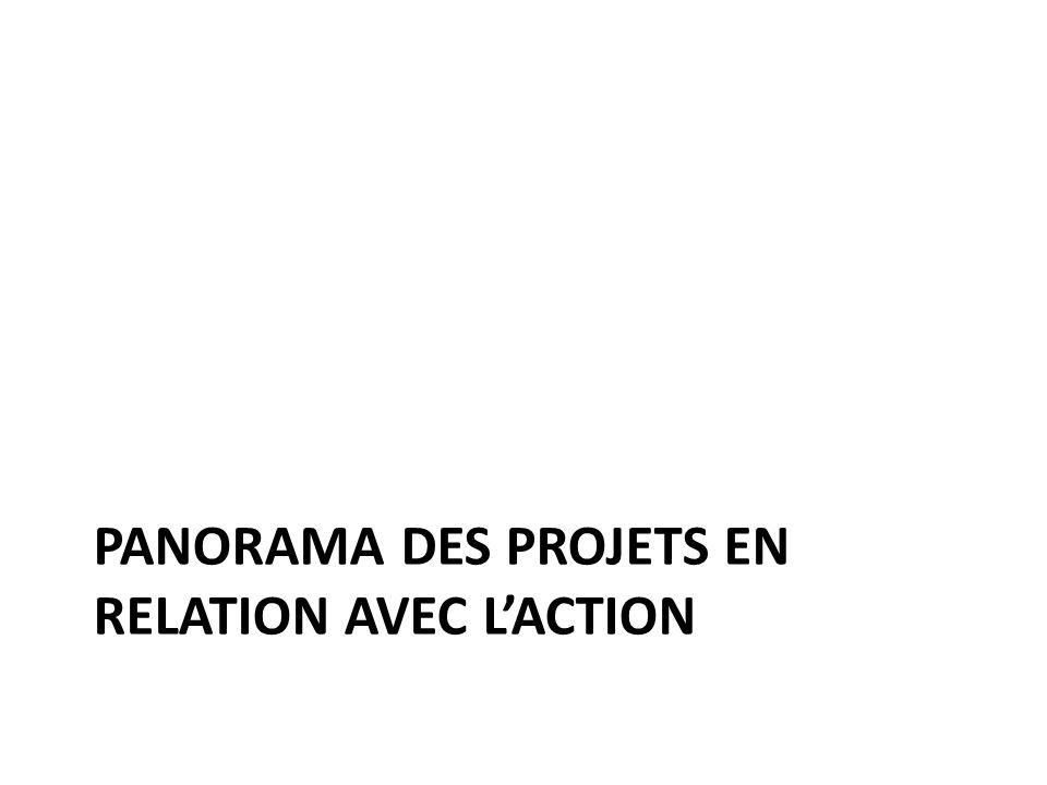 Panorama des Projets en relation avec l'action