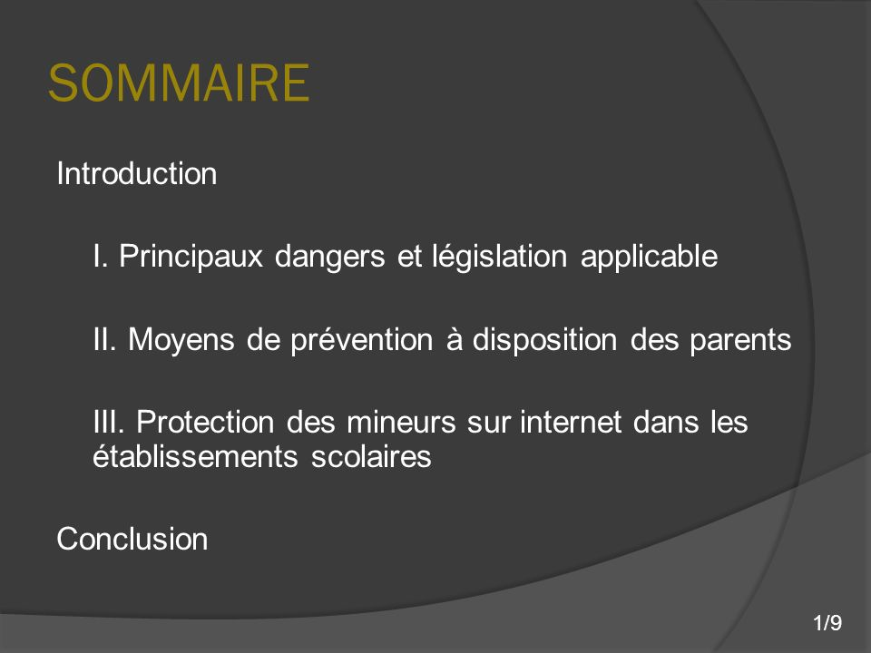 SOMMAIRE Introduction I. Principaux dangers et législation applicable