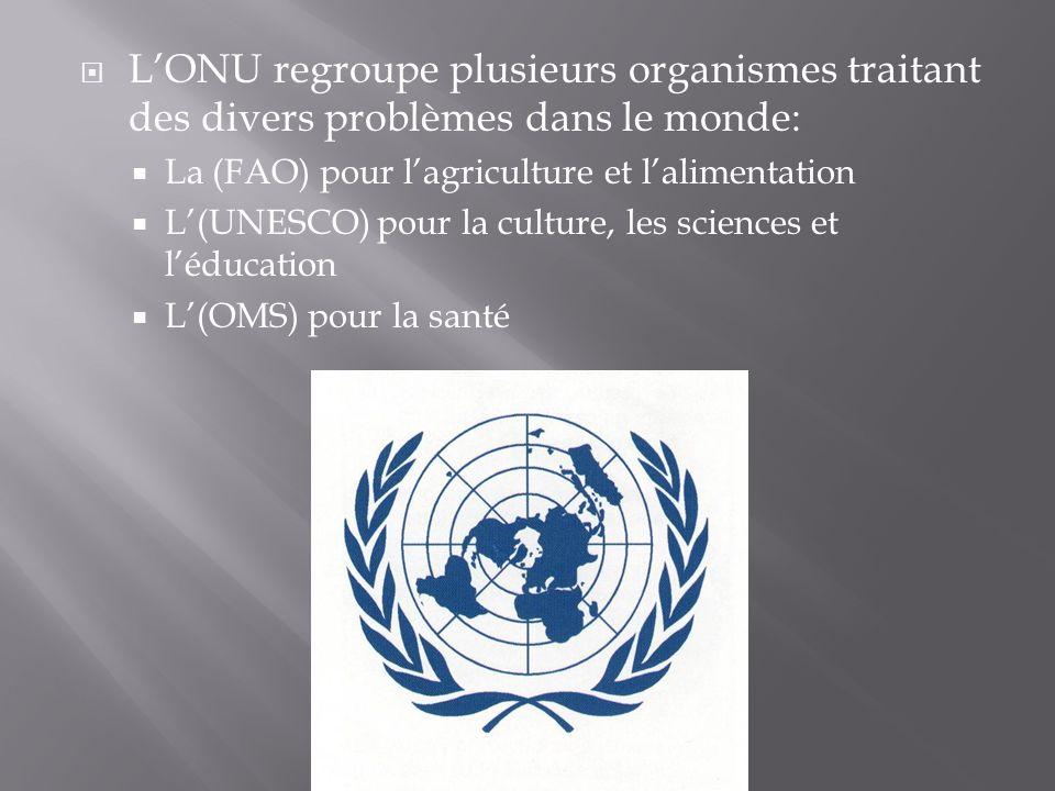 L'ONU regroupe plusieurs organismes traitant des divers problèmes dans le monde: